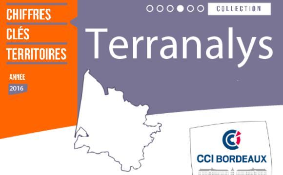 Terranalys